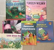 Classroom Library Frogs in Okinawa, Japan