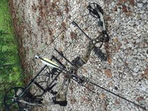 Bear Encounter Compound Bow in Fort Leonard Wood, Missouri