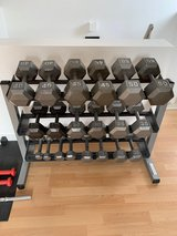 Weights / Dumbbell Set with Rack 5-50 lbs from BX in Ramstein, Germany