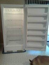 Upright Freezer in Wilmington, North Carolina