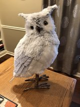 "Pier 1 Furry Owl - 20"" Tall in Glendale Heights, Illinois"