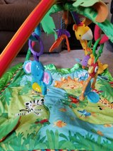Fisher Price Infant Playmat in Bolingbrook, Illinois