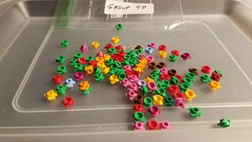 Lego 111 Flowers Group 98 in Chicago, Illinois