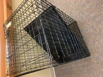 Large dog crate in Plainfield, Illinois