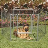 Precision Pet Courtyard Kennel Exercise Pen in Naperville, Illinois
