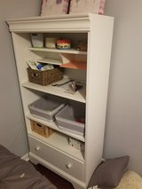 shelves and drawer in Elgin, Illinois