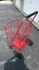 Large, Collapsible Shopping Cart in Shorewood, Illinois