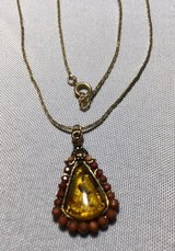Amber Vintage Pendant on Vintage Chain Rootbeer Colored Faceted Stones Border Critters in Amber in Kingwood, Texas