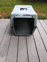 Blue pet carrier in Spring, Texas