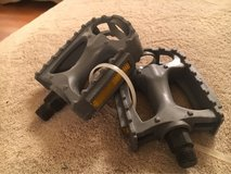 Gray Bike Pedals in Bolingbrook, Illinois