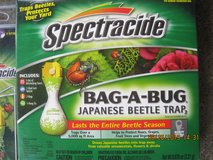 JAPANESE BEETLES TRAP in Fort Campbell, Kentucky