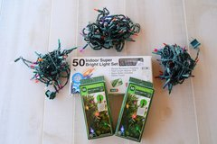 Mini Lights 50 count in Alamogordo, New Mexico
