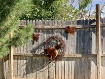 Outdoors Fence/Wall Adornment in Alamogordo, New Mexico