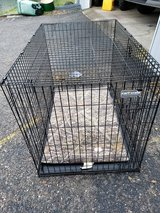 extra large dog care cage in Fort Knox, Kentucky