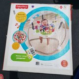 Fisher Price Jumperoo Exerciser in Naperville, Illinois