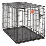 WANTED:  Large Dog Cage for Cat Rescu in Plainfield, Illinois