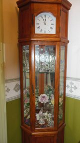 CURIO CABINET in Belleville, Illinois