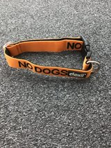 Dog Collar Adjustable in Lakenheath, UK