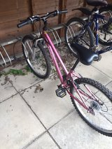 I AM BUYING USED BICYCLES. in Lakenheath, UK