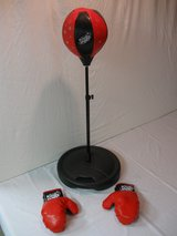 Punching Bag/Stand/Gloves in Joliet, Illinois