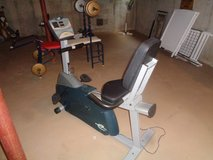 Electronic Bike Exerciser in Plainfield, Illinois