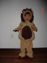 Halloween costume Lion in Oswego, Illinois