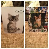 CAT - PICTURE BOOK  huge 24 x 17 inches in Fort Rucker, Alabama