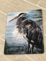 Hand Painted Glass Cutting Board New Orleans Artist Pelican in Conroe, Texas
