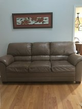 Leather Couch in Naperville, Illinois