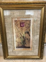 Tulip print in Orland Park, Illinois