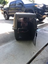 large dog kennel in Travis AFB, California