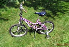 Girls Bike! in Joliet, Illinois