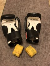 Boxing Gloves in Oswego, Illinois