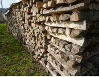 Fire wood for sale in Mannheim, GE