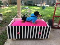 DOLL or PET Bed in The Woodlands, Texas
