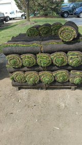 sod, detaching,  aereation, in Naperville, Illinois