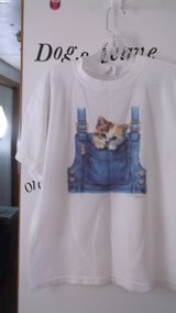 kitten in a pocket tee in Alamogordo, New Mexico