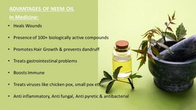 Cold-pressed Neem oil in Bellaire, Texas