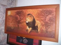 Wildlife - -ITEMS-reduced in Ramstein, Germany