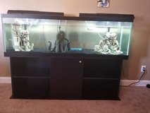 125 gallon tank with everything in Camp Lejeune, North Carolina