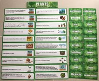 Lakeshore Plants pocket chart cards in Okinawa, Japan