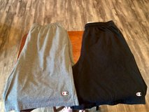 Large Men's Champion Shorts (2) in Fort Campbell, Kentucky