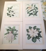 4 Matted Flower Prints in Joliet, Illinois