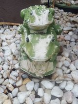 Ceramic Frog in Camp Lejeune, North Carolina