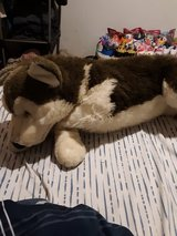 Big Stuffed Husky Animal Toy in Plainfield, Illinois