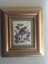 Set of 2 Nicely Framed Monkey Pictures in Spring, Texas