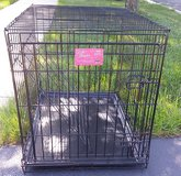 LIfe stages dog cage in Joliet, Illinois