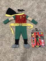 Robin Halloween costume in Joliet, Illinois