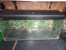 3ft Aquarium in Lakenheath, UK
