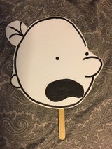 Diary of a Wimpy Kid mask in Joliet, Illinois